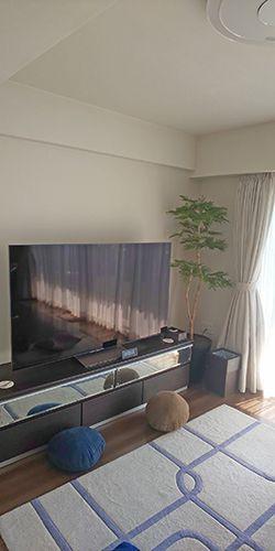 光触媒 ネムの木